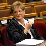 Jövő héten fogadhatja el a parlament a közoktatási és a felsőoktatási törvényt