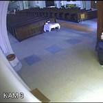 Keresik a titokzatos nőt, aki lopott pénztárcát hagyott a templomban – videó