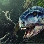 85 millió éve élt húsevő dinoszaurusz koponyájára bukkantak a tudósok