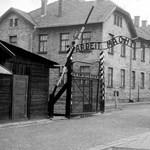 Nem lesz Horthy-mise Auschwitz felszabadulásának évfordulóján