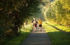 Életmódszakorvos: Tudományosan bizonyított, hogyan élhetünk hosszú, egészséges életet