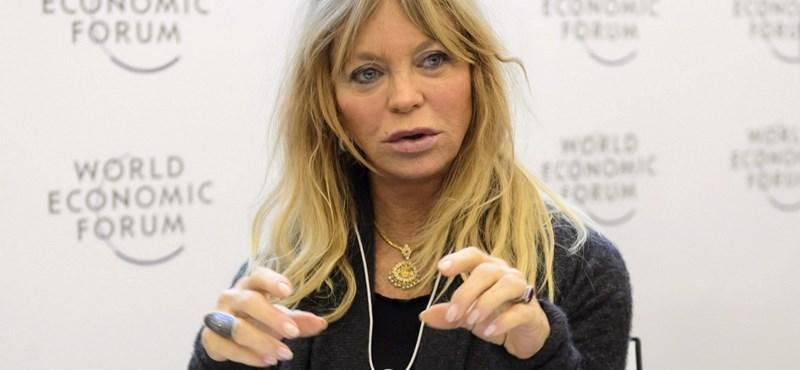 Goldie Hawn 2002 után először játszhat filmben