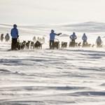 Kutyaszánon szelte át a sarkvidéket a magyar lány