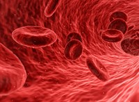 Forradalmi vértisztító eljárással kísérleteznek Szegeden