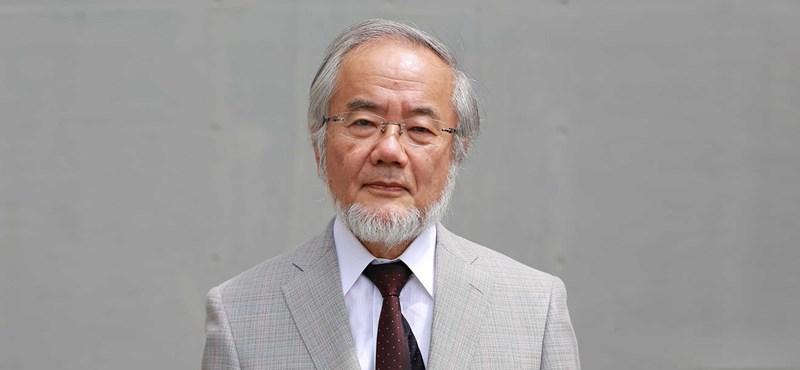 Sejtkutatással foglalkozó japán tudós kapja idén az orvosi Nobel-díjat