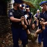 Videó: a Ligetvédő leütése testközelből