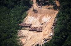 Agyonlőttek egy erdészt Romániában, miközben illegális fakitermelést próbált megakadályozni
