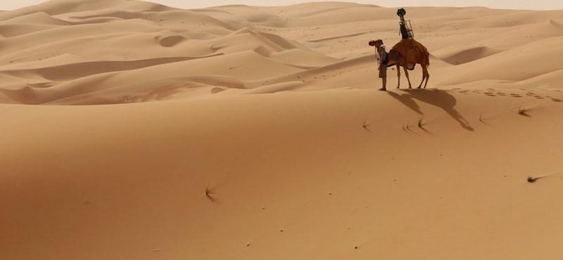 Pár kattintás, és máris tevén ülve járhatja be a sivatagot a Street View-n