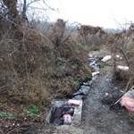 400 ezer kiló veszélyes hulladékot szedtek össze a ráckevei Duna-ágnál