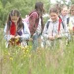 Új tantárgyakat vezetnének be az általános iskolákban az elégedetlen brit diákok