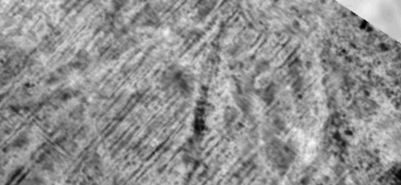 Ezer éves viking hajóra bukkantak a föld alatt
