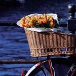 Látogasson el Amszterdamba - Most megnyerheti utazását