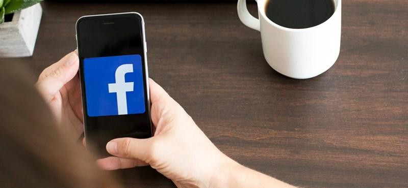 Három hónap alatt 1,3 milliárd kamuprofilt törölt a Facebook