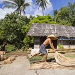 Banánrostból készült maszkokkal harcolnak a műanyagszennyezés ellen