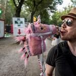 Csak győzze kerülgetni az unikornisokat a Szigeten – fotók