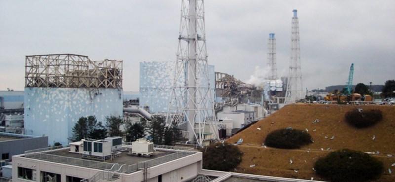 Az atomerőművek bezárásáért tüntettek Japánban