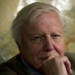 10 dolog, amit biztosan nem tudott Attenborough-ról
