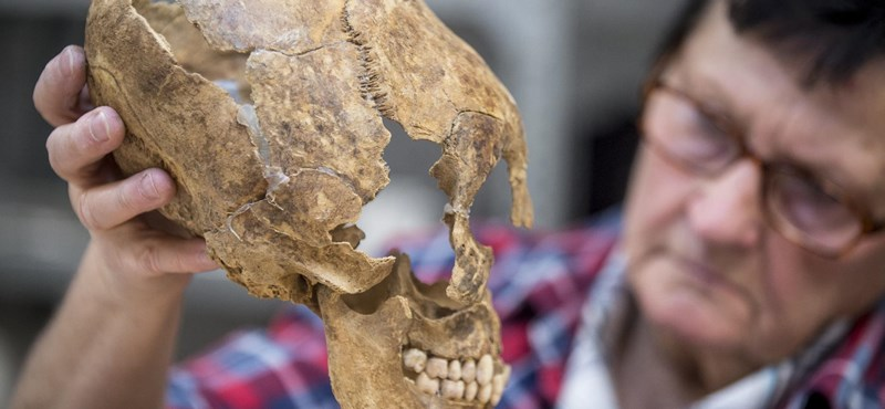 Féldrágakövekre és egy ötödik századi harcos koponyájára bukkantak régészek az új Mercedes-gyár területén