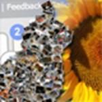 Ingyenes szoftverek és szolgáltatások nyári fotóink feldolgozásához