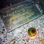 Egy hajléktalannak állítottak emléktáblát Albertfalván