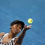 Venus Williams elhibázott szerváját a labdaszedő bánta