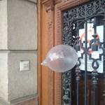 Magyar Nemzet: szorul a hurok a Borkai-féle Ördög ügyvédje körül
