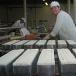 A Németh-kormányt teszi felelőssé a cukoripar privatizációjáért a parlamenti jelentés