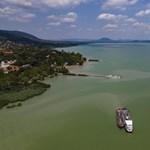 Allergiás reakciót, hasmenést okozhat a Balatonban elszaporodott kékalga