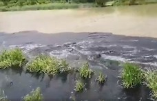 Nagyon büdös van a székesfehérvári bánya környékén, ahol a horvát szennyvíziszapot tárolják