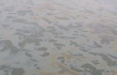 Harminc kilométeres olajfoltot észleltek a Dunán Bécsnél