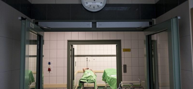 Lélegeztetőgépeket vett a Semmelweis Egyetem, hamarosan megérkeznek