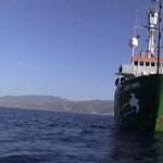 Milliárdos EU-támogatással tizedelik a tengerek halállományát