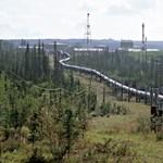Joe Biden felfüggesztette az olajcégek koncesszióját az alaszkai vadrezervátumra