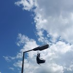 Tűzoltók mentettek ki egy bajba kerül gólyát
