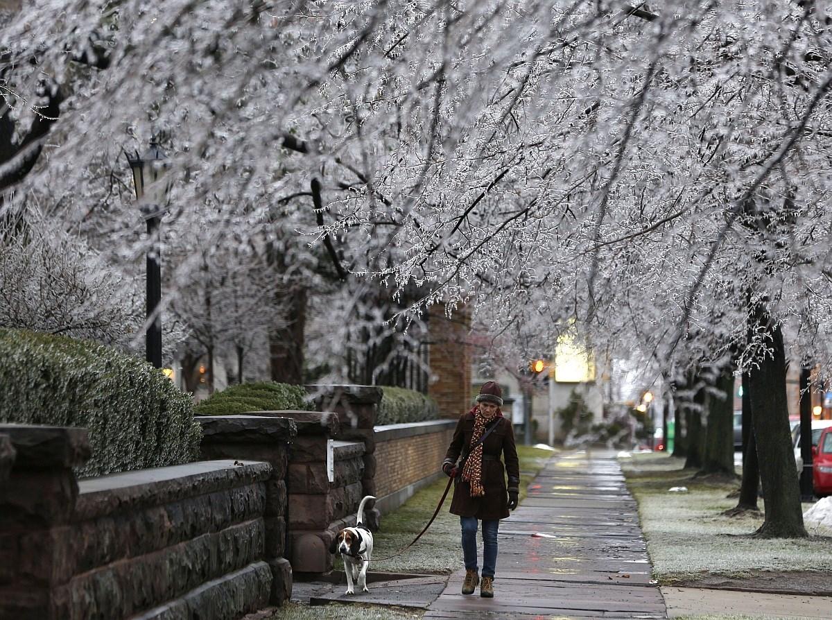 Fotó: jeges fák alatt sétálnak Buffaloban