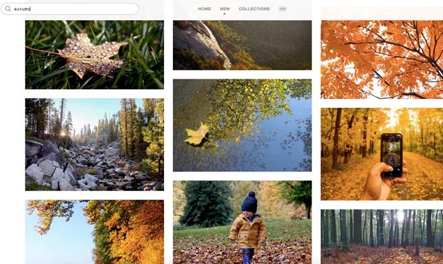 Szeretne gyönyörű fotókat ingyen és bármire használni? Itt sokat talál belőlük