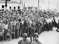 A franciák már beszélnek róla, de nem kérnek bocsánatot az algériai gyarmati háborúért