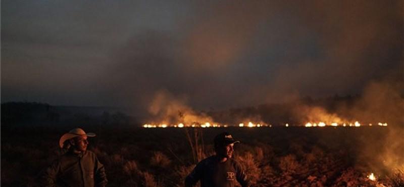 Amazóniai tüzek: kinek van igaza?