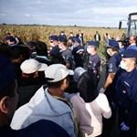 Ezer menekült futott a rendőrök elől Röszkénél