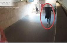 Videón, ahogy egy tolvaj áldozata után oson és ellopja a tárcáját