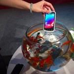 Itt a világ legolcsóbb vízálló okosmobilja