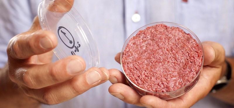 Leonardo DiCaprio üzeni: eljött az ideje annak, hogy ne együnk több állati húst, hiszen van laborhús is