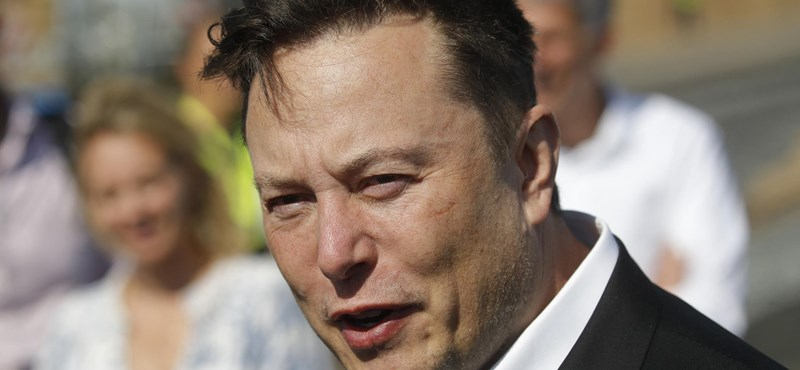 Elon Musk kiírta, mi a kedvenc játéka, azonnal milliók kezdték letölteni az alkalmazást