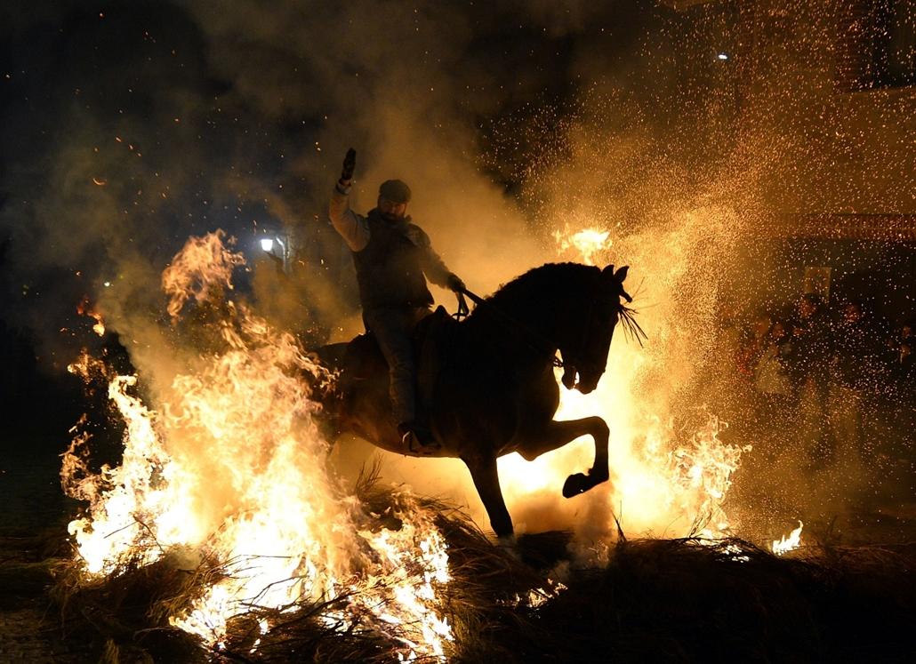 afp.14.01.16. - San Bartolome de Pinares, Spanyolország: ló és lovasa Szent Antal, az állatok védőszentje tiszteletére tartott ünnepségén - a ló éve nagyítás