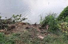 Traktorral felborult és meghalt egy férfi Alsópélpusztán