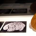 Levágott fejek és péniszek, leszeletelt agy – nem csak Gandhi hamvait rabolták el