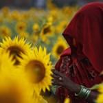 Komoly árat fizetett az emberiség a mezőgazdaság fejlődéséért