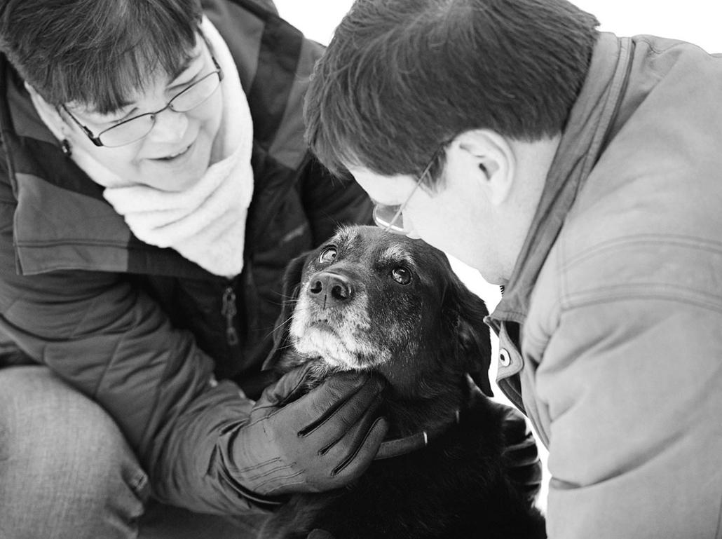 NE használd, nagyításhoz kértük!!! - kutyák altatás előtt - dixie-tehya-58