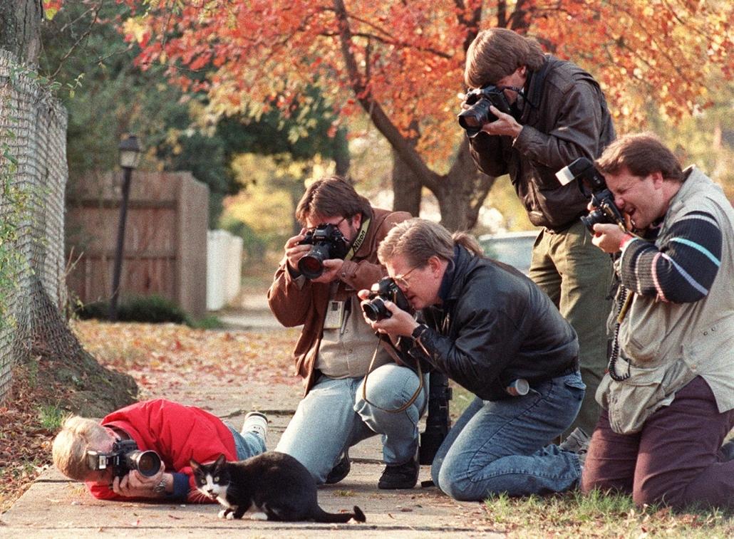 1992.11.17. - Bill Clinton macskája, Zokni, akit éppen fényképeznek a fényképészek a kertben fényképeznek a macskát kint a kerben Zoknit, a dögöt. - CLNTNAGY