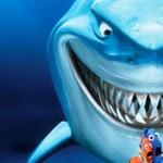 Életre kelt a cápa a Némó nyomában rajzfilmből